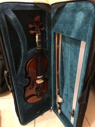 🚚 Violin