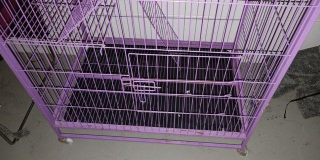 🚚 2 Tier Cat Cage for Sale