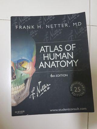 🚚 Netter's Atlas of Anatomy