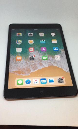 iPad mini 2 16gb cellular and wifi 有中文