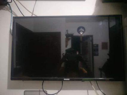 TV MASS BRAND