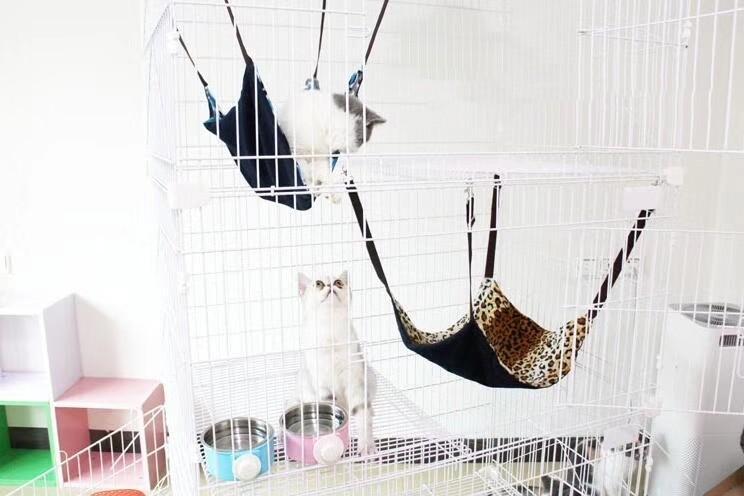 優質雙面貓吊床