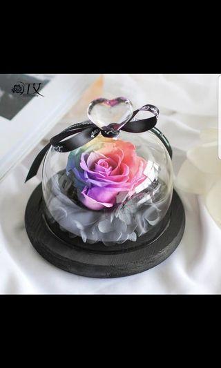 Preserved Rose Heart Glass Jar Set #EndGameyourExcess