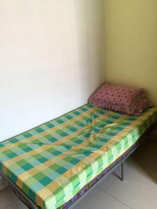 Single Bed (steel frame+tilam)