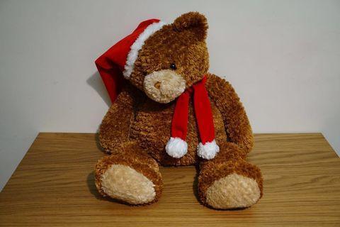 🚚 GUND 泰迪熊 聖誕節