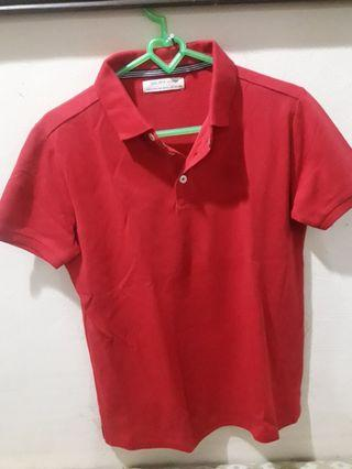 ZARA Boys Red Colar
