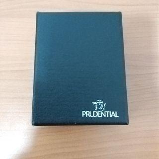 Prudential Padlock