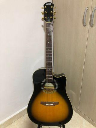 🚚 Congress Electro Acoustic Guitar