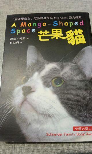 🚚 芒果貓 小魯大獎小說