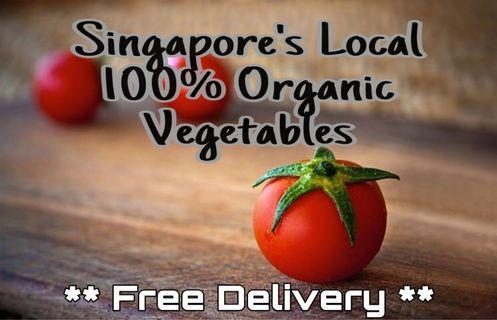 **FREE DELIVERY** 100% Organic Vegetables <<Grown & Farmed in Singapore>>
