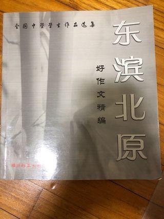 Secondary School Chinese Essays