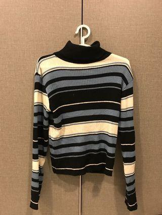 Turtle neck Knitted Top
