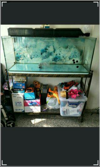 4ft Fish Tank with stand for sale