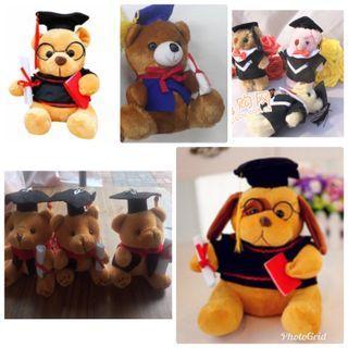 BN Graduation Teddy Bears Dog