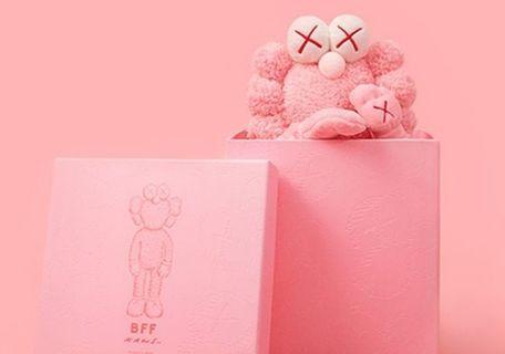 Kaws bff pink plush