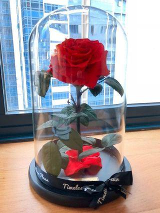 🚚 Beautiful real Red Rose in a glass dome, with 'Happy Birthday!' message on golden plaque