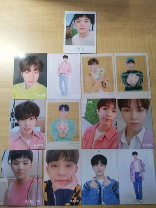 wtt/wts  seventeen haru trading cards