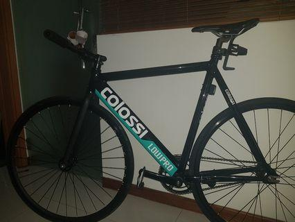 Colossi Low Pro (Test Market)