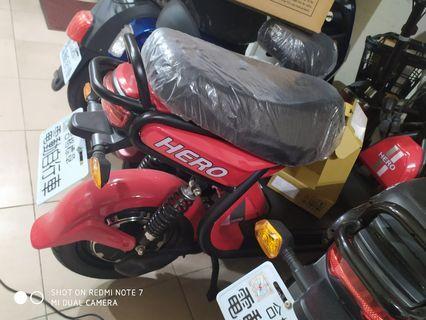 Hero...motor 800 w...battery48.  V  24 ah