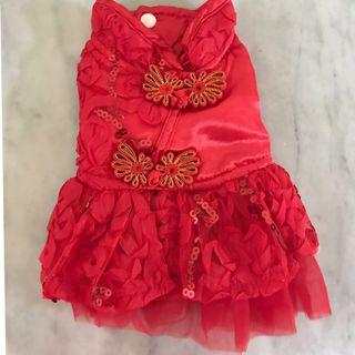 🚚 Small dog dress XS/S, chihuahua, small breed