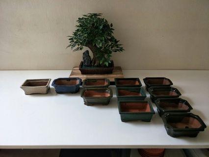 Bonsai Pots New (Unused) 3 pots left, 8 sold already