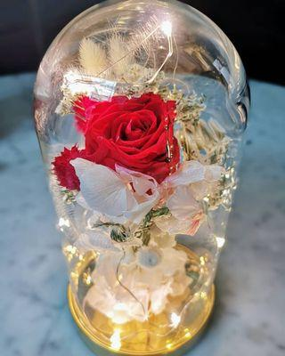 🌹Amore Rose in Glass Dome🌹