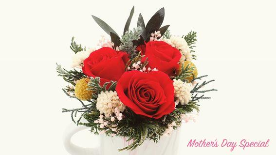 10% Off Storewide Purchase|Mother's Day Is Coming - Shop For Mum|Premium Preserved Flower Gifts