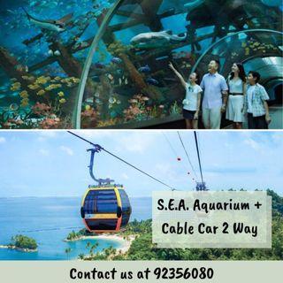 [COMBO] SEA Aquarium + Cable Car Sky Pass