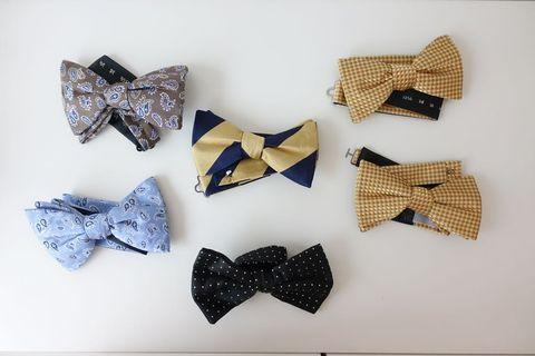 Bow Tie ascot chang