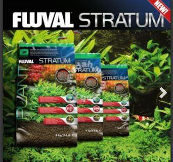 NEW FLUVAL STRATUM SUBSTRATE FOR PLANTS AND SHRIMP
