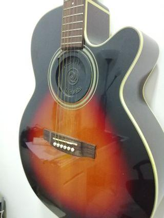 Acoustic Guitar Takamine DSeries