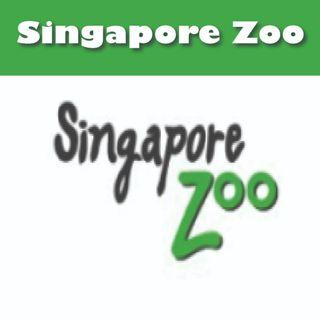 Singapore Zoo with Tram (ETICKETS)