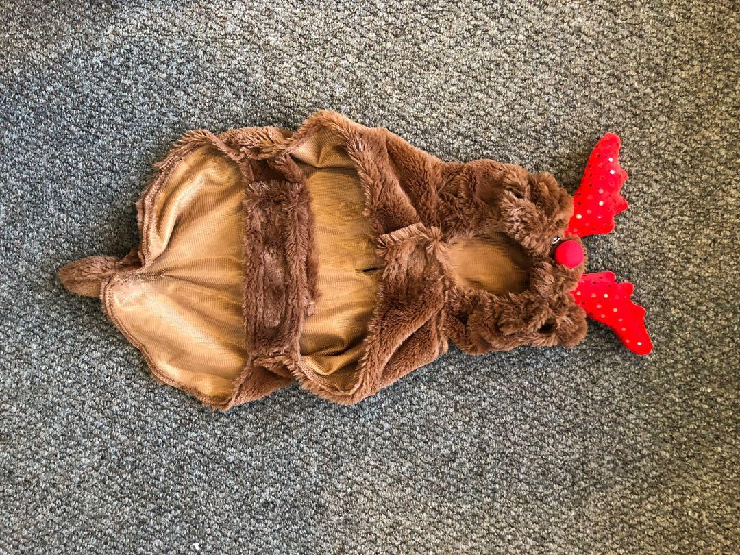 Raindeer Costume