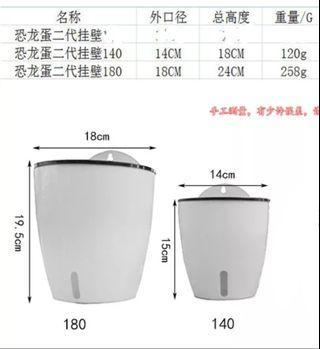 自動補水,最新設計的花盆