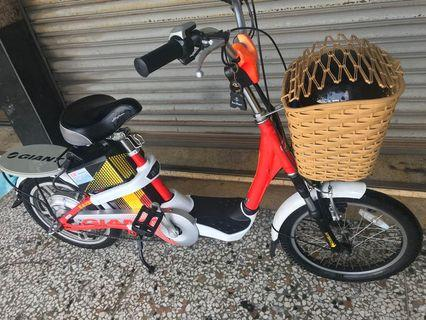 Giant electric bike. New battery. Have warranty