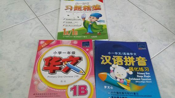 P1 Chinese Assessment Book and Hanyu Pinyin Enrichment Exercises