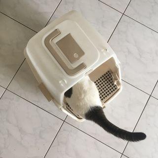 全罩式貓砂盆