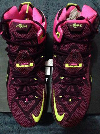 74859ef7a64b Nike Lebron 12 Double Helix brand new