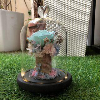 Preserved Rose Glass Dome  with LED light (TiffanyBlue Rose)