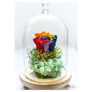 GREENHOUSE GLASS WITH LED LIGHT (24cm) - RAINBOW PRESERVED ROSE (7cm)