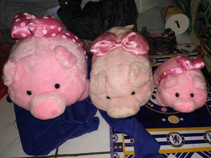 Take All Boneka Pig