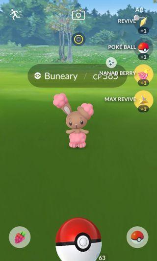 Pokemon Go: Shiny Buneary for Sale