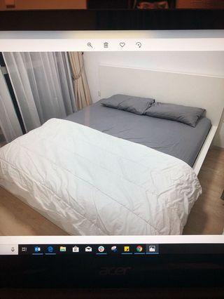 🚚 2m x 2m white bed frame and mattress