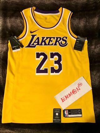 d00d4b459 lebron james lakers jersey