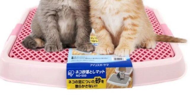 貓咪🐱日本阻隔貓沙四濺沙盆
