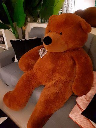 6Ft Brown Colour Giant Teddy Bear