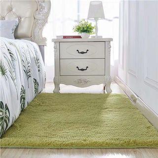 特價‼️居家實用地毯