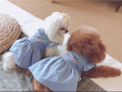 寵物牛仔裙