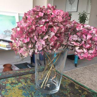 Large Glass Vase for Flowers / Display / Gift