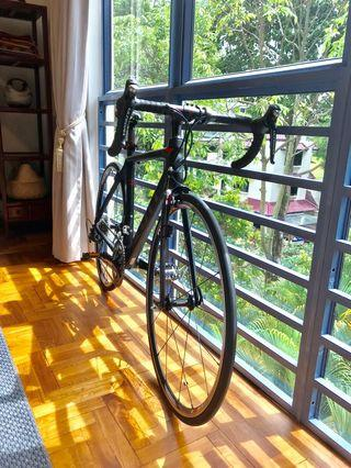 Scott CR1 10 - Cult Bike - 52cm (S)
